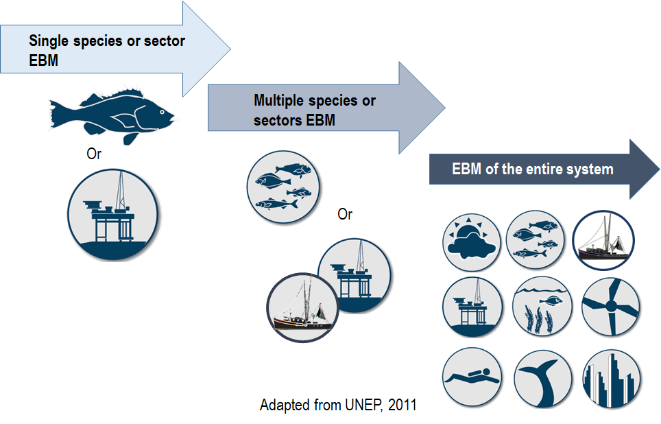 Ecosystem based management | Integrated Ecosystem Assessment